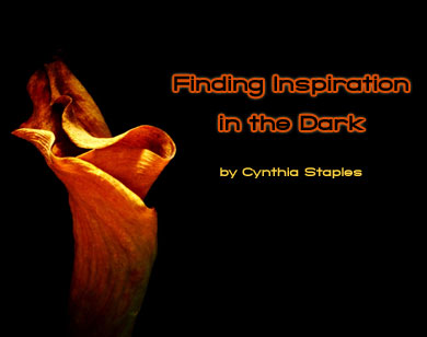 Finding Inspiration in the Dark - Photo © Cynthia Staples