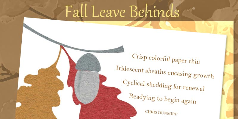 Fall Leave Behinds