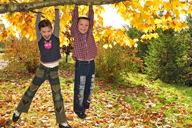 Kids hanging from tree branch