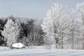 Winter Writing and Blogging Prompts - Snowy Winter Scene